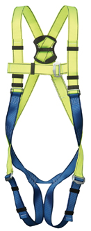 GForce P10 Harness