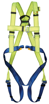 GForce P30 Harness